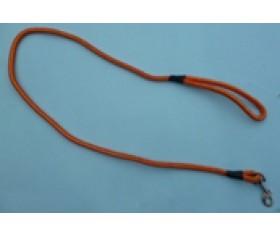 Dog Lead - Orange