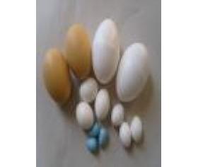 Nesting Eggs (fake eggs)